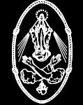 Siostry Franciszkanki Niepokalanej